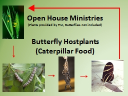 Open House Ministries PowerPoint Presentation, PPT - DocSlides