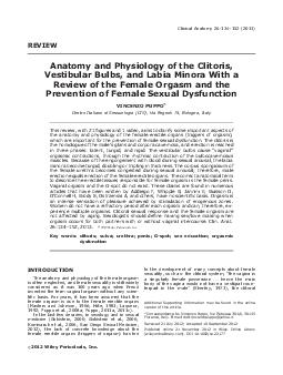 REVIEW Anatomy and Physiology of the Clitoris Vestibular Bulbs and Labia Minora With a Review of the Female Orgasm and the Prevention of Female Sexual Dysfunction VINCENZO PUPPO Centro Italiano di Se