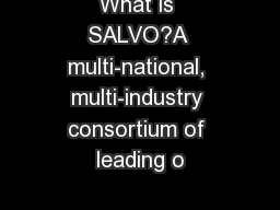 What is SALVO?A multi-national, multi-industry consortium of leading o