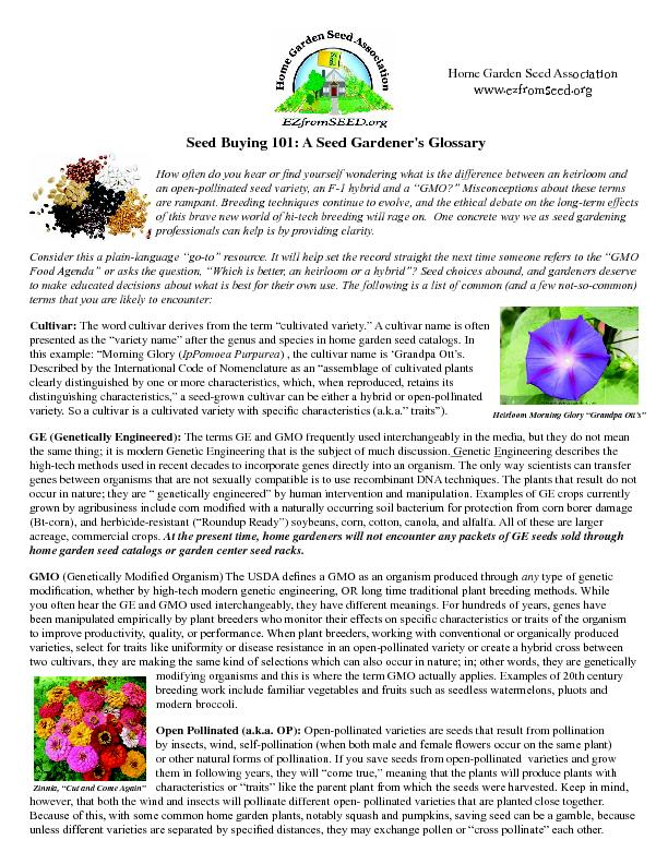 """an open-pollinated seed variety, an F-1 hybrid and a """"GMO?"""