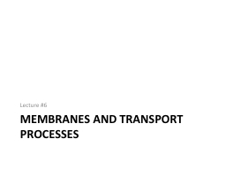 Membranes and TRANSPORT Processes
