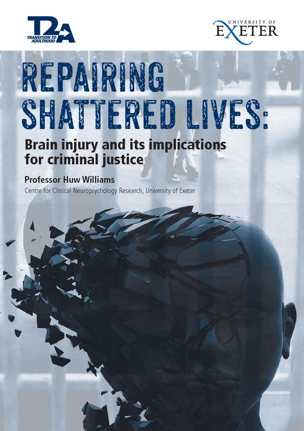 Repairing Shattered Lives