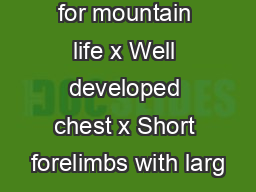 Adaptations for mountain life x Well developed chest x Short forelimbs with larg PDF document - DocSlides