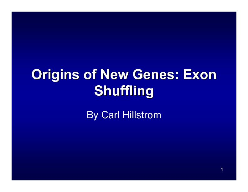 Origins of New Genes:
