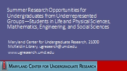 Summer Research Opportunities for