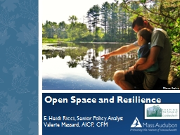 Open Space and Resilience