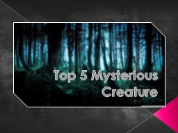 Top 5 Mysterious Creature
