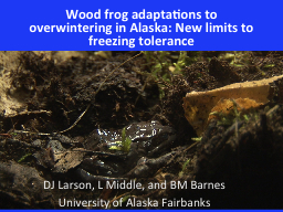 Wood frog adaptations to overwintering in Alaska: New limit
