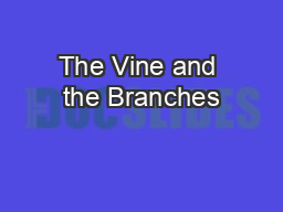 The Vine and the Branches PowerPoint PPT Presentation