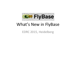 What's New in FlyBase
