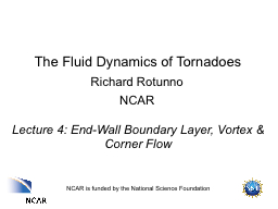 The Fluid Dynamics of Tornadoes