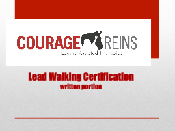 Lead Walking Certification