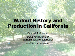 Walnut History and Production in California PowerPoint PPT Presentation