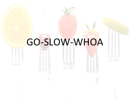 GO-SLOW-WHOA PowerPoint PPT Presentation