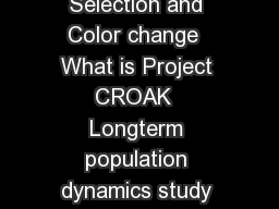 Project CROAK It aint easy bein green Kermit the frog Balancing Selection and Color change  What is Project CROAK  Longterm population dynamics study of Pacific Tree Frogs  Hyla regilla  Involves hig