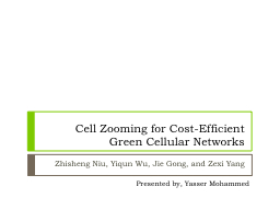 Cell Zooming for Cost-Efficient