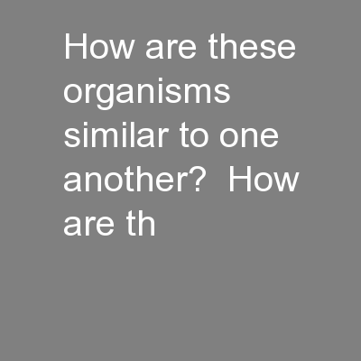 How are these organisms similar to one another?  How are th PowerPoint PPT Presentation