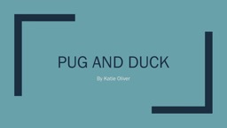 Pug and duck