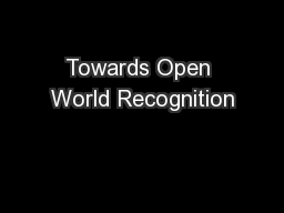 Towards Open World Recognition