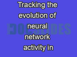 Tracking the evolution of neural network activity in