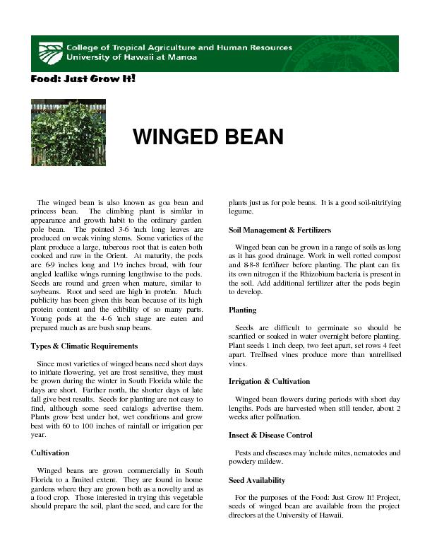 Food: Just Grow It!       WINGED BEAN   The winged bean is also known