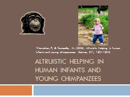 Altruistic helping in human infants and young chimpanzees