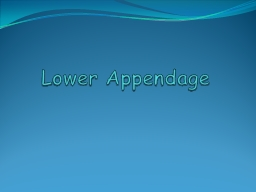 Lower Appendage
