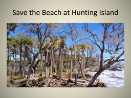 Save the Beach at Hunting Island PowerPoint PPT Presentation