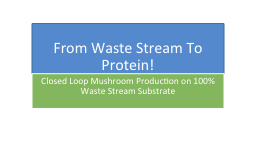 From Waste Stream To Protein! PowerPoint PPT Presentation