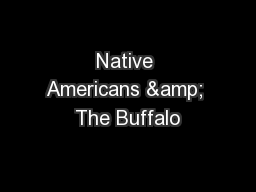 Native Americans & The Buffalo PowerPoint PPT Presentation