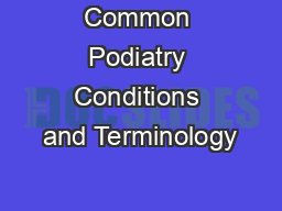 Common Podiatry Conditions and Terminology PowerPoint PPT Presentation