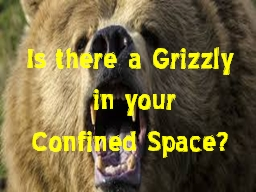 Is there a Grizzly