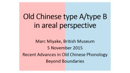 Old Chinese type A/type B