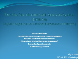 The Florida Marine Spill Analysis System ( PowerPoint PPT Presentation