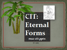 CIT: Eternal Forms PowerPoint PPT Presentation