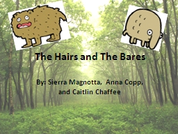 The Hairs and The Bares