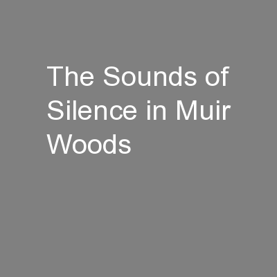 The Sounds of Silence in Muir Woods PowerPoint PPT Presentation