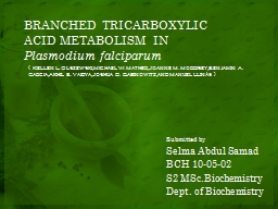 BRANCHED TRICARBOXYLIC ACID METABOLISM IN