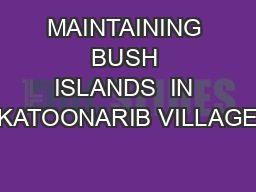 MAINTAINING  BUSH  ISLANDS  IN KATOONARIB VILLAGE