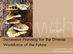 Succession Planning for the Diverse Workforce of the Future
