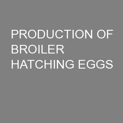 PRODUCTION OF BROILER HATCHING EGGS