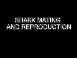 SHARK MATING AND REPRODUCTION PowerPoint PPT Presentation