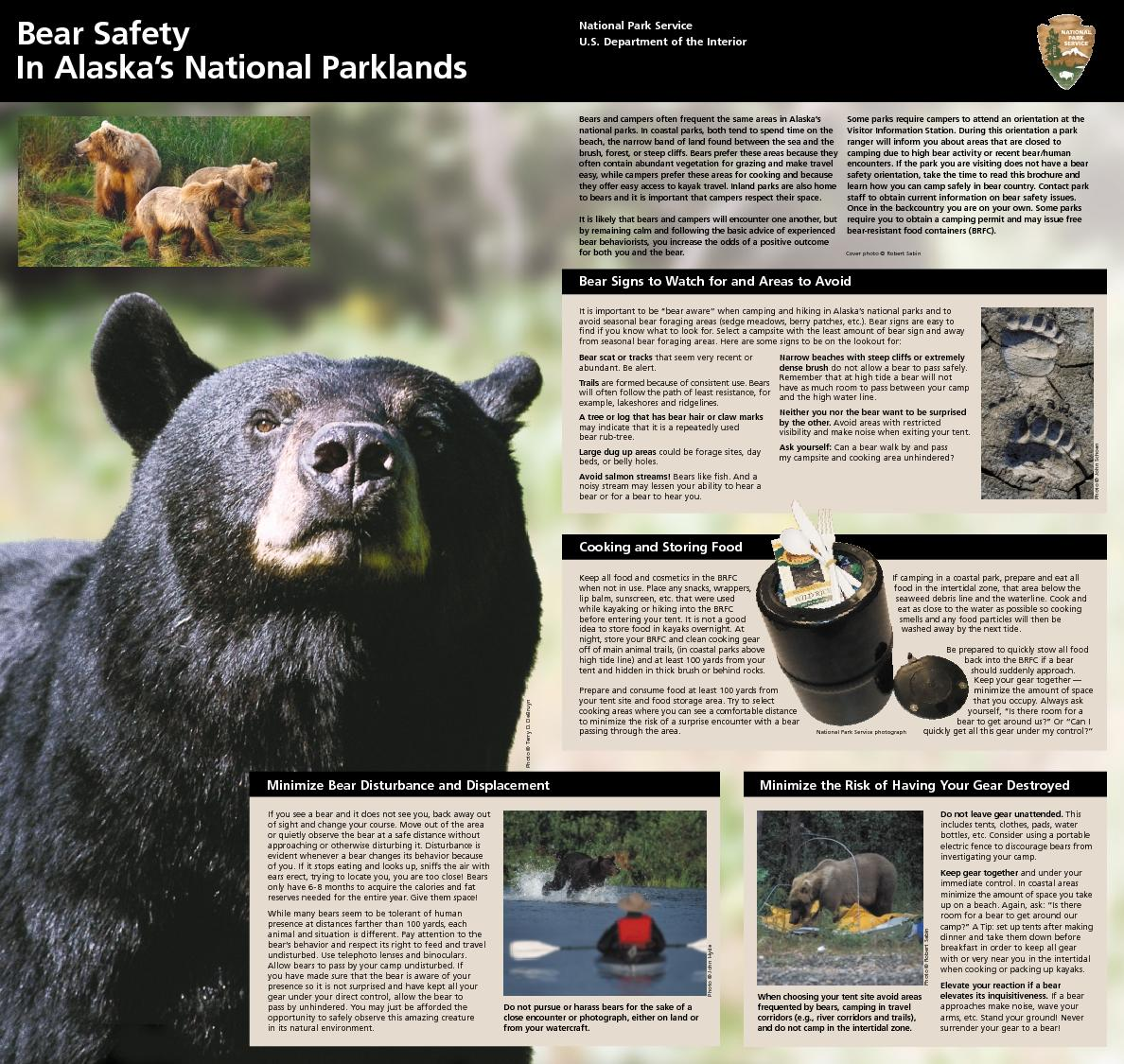 Bears and campers often frequent the same areas in Alaska
