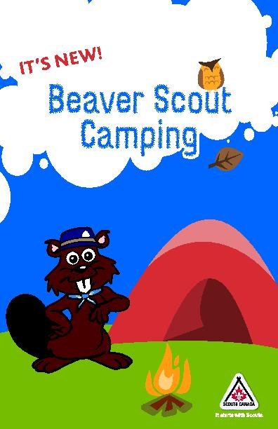 Beaver Scout