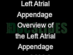 AMPLATZER Cardiac Plug A Patients Guide to the Nonsurgical Closure of the Left Atrial Appendage  Overview of the Left Atrial Appendage and Atrial Fibrillation The left atrial appendage LAA is a muscu