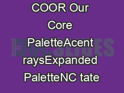 NC TATE COOR Our Core PaletteAcent raysExpanded PaletteNC tate's