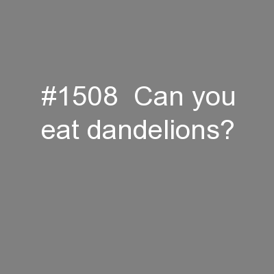 #1508  Can you eat dandelions?