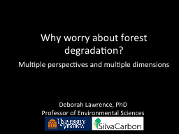 Why worry about forest degradation?