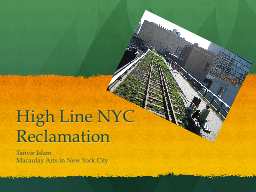 High Line NYC Reclamation
