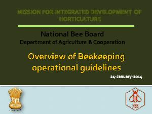 National Bee Board Department of Agriculture  Cooperation  Pawanexh Kohli National Beekeeping Development Board Unorganized Sector SFAC registered National Bee Board under Society Act    NBB was reco PowerPoint PPT Presentation
